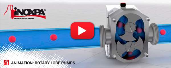 animation-rotary-lobe-pumps